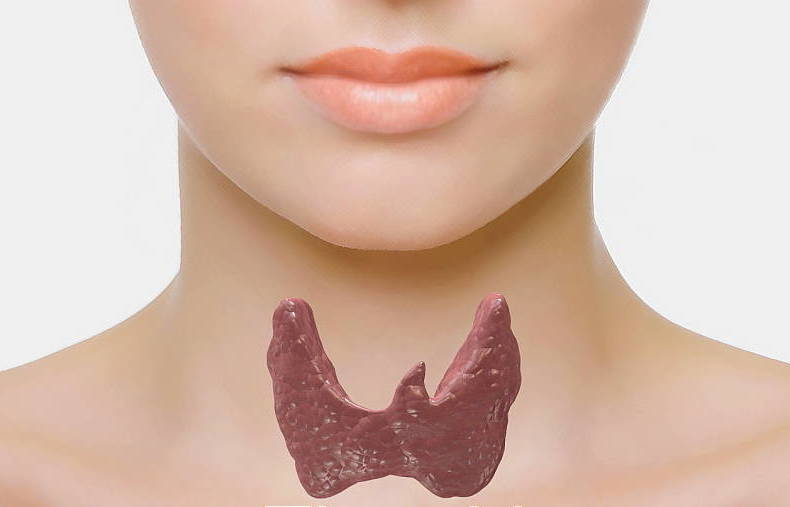 Nutritional Therapy approach to thyroid problems